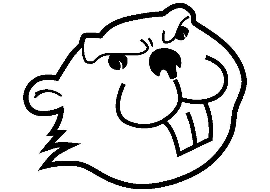CORAM TOOLS GMBH - Biber